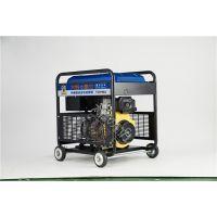 大泽250A曼联博彩赞助商-亚博体育发电电焊一体机