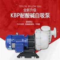 国宝高吸程自吸水泵 舟山KBP系列耐腐蚀自吸泵 好用还不贵