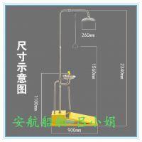 定制自动排空冲淋器 复合式BTF81C碳钢石油防冻洗眼器