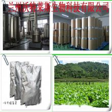 灵芝多糖40% 定制生产 现货包邮 灵芝多糖 397