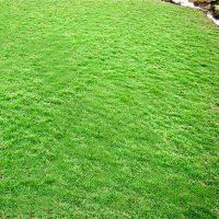人工草皮围挡围墙 足球场绿色人造草坪 休闲场地人造假草皮厂家