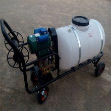 果树农药喷雾器 机动园林果园喷雾机工作视频