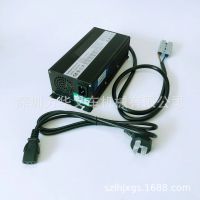 电动叉车充电器 内置充电机 电瓶充电器