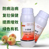 柑橘溃疡病如何降低病害的发病率 农药杀菌剂靓果安水剂