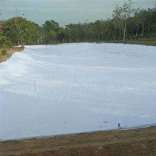 江西蓄水池防水复合土工膜价格