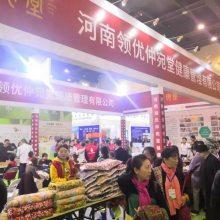 2020河南国际大健康产业及个人健康产品博览会
