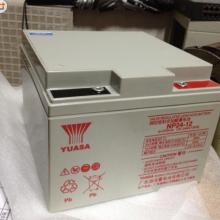 汤浅蓄电池NP17-12铅酸蓄电池12V17AH