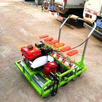 蔬菜种子播种机 人力手推种植机 电动汽油菜籽播种机