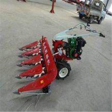 亚博国际真实吗机械 批发小型燕麦收割机 微型汽油牧草割草机 水稻收割机割捆机
