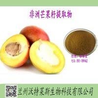 非洲芒果籽提取物 总黄酮≥3% 芒果籽粉 芒果籽浸膏 芒果籽浓缩液