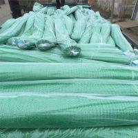 盖土网环保绿网 储煤场防尘网 防尘网的图片