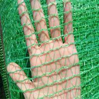 3针盖土网 工地盖土网 盖土防尘网