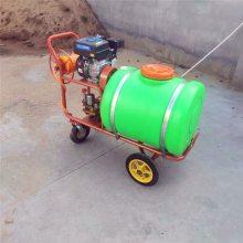 亚博国际真实吗牌 园林汽油高压打药机 300L手推式远射程喷雾器 手推打药车 园林喷雾设备