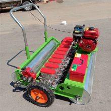 大棚蔬菜育苗精播机 多种规格蔬菜专用精播机