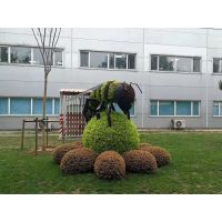 成都真植物造型出售 河马宝宝雕塑 适合室外摆放在造型