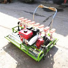 电动汽油播种机青菜菠菜量播机免间苗蔬菜播种机