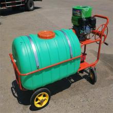 农用手推式打药机 农田多功能喷雾器