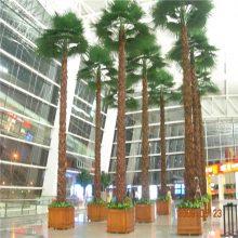 恒翔_迷你仿真棕榈树哪里有采购什么流程