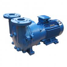 2BC水环式真空泵 冠田广一水环真空泵 水循环抽真空泵