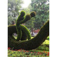 四川成都真植物运动风格造型,定制造型多样化的佛甲草雕塑,真植物卡通造型