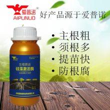 爱普诺生根原液硅藻激活酶 强力生根,护叶壮苗,无缓苗期,抗老