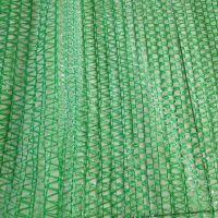 环保pe防尘网 绿化盖土网 扁丝盖土网