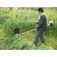 圆盘刀片割草机 家用小型剪草机 四冲程汽油剪草机