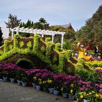 微景观创意系列 仿真植物绿雕 公园景观草雕 可定制人物雕塑 绿雕制作