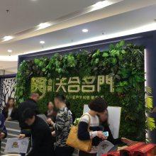 墙上植物多少钱一平方,仿真绿植墙哪里有卖的,广东塑胶假花pu材料厂家批发销售仿真草皮