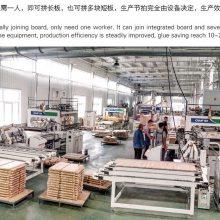 石家庄厂家直销 灿高液压实木拼板机 全自动木工拼板机