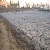 镀锌丝石笼网 包塑六角网 河床生态格网