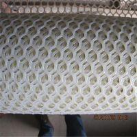 白色塑料养殖网 小鸡塑料养殖网 成鸡塑料养殖网