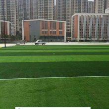 幼儿园人造草坪选择
