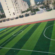 青岛足球场-人造草坪铺装-景观人造草坪-幼儿园彩虹草-跑道草坪