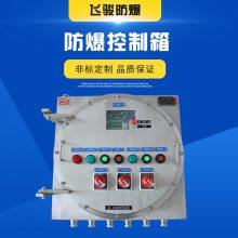 不锈钢防爆配电箱 IIC 配电箱厂家 非标定制