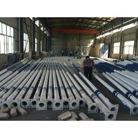 厂家供应4米5米6米定制灯杆灯杆定制