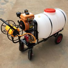 科圣手推式打药机/农场养殖禽舍消毒喷雾机/汽油动力喷雾器