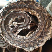 野生蕲蛇多少钱一条 蕲蛇的功效和价格