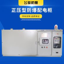 非标定制 正压型防爆配电柜 粉尘防爆电气控制柜防爆