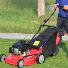 小型家用草坪机 公园别墅剪草机