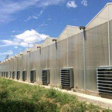 智能pc阳光板温室的生产厂家/塑料阳光板温室大棚优点/连栋阳光板温室使用时间
