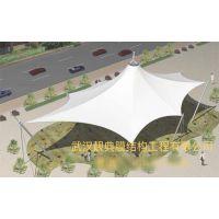 上海膜结构方案 优质推荐 靓典供应