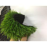 广东仿真草坪 草坪地毯 七年质保 量大从优 实力厂家