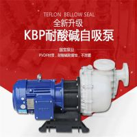国宝KBP-75052H系列 工程塑料高扬程污水自吸泵,用心设计