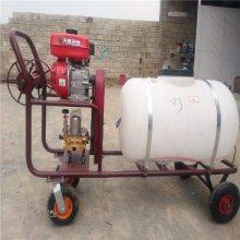 推车式打药机 农用高压喷雾器 汽油打药机批发厂家