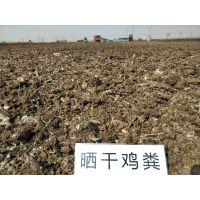 山西阳泉有机肥厂家批发纯干鸡粪块发酵鸡粪