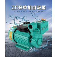 自吸泵 不锈钢家用耐腐蚀自吸泵多少钱一台批发 高品质自吸泵报价