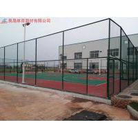 湖南篮球场铁丝防护网 涂塑荷兰网 护栏网厂 长沙围网价格