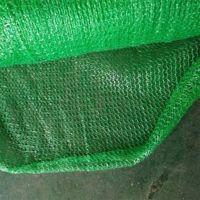 密织盖土网价格 绿化盖土网 聚乙烯盖土网价格