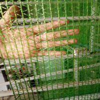 绿色盖土网供应 煤厂防尘网 遮阳盖土网